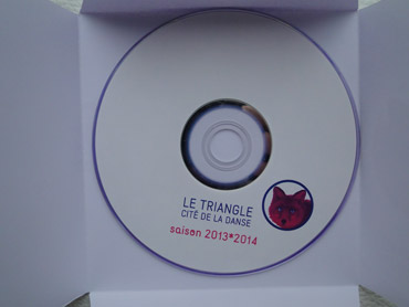 DVD de saison du Triangle 2013