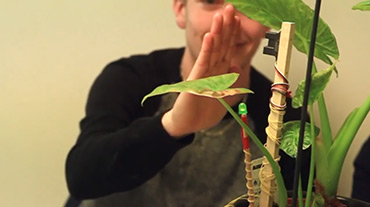 Plantes et arduino